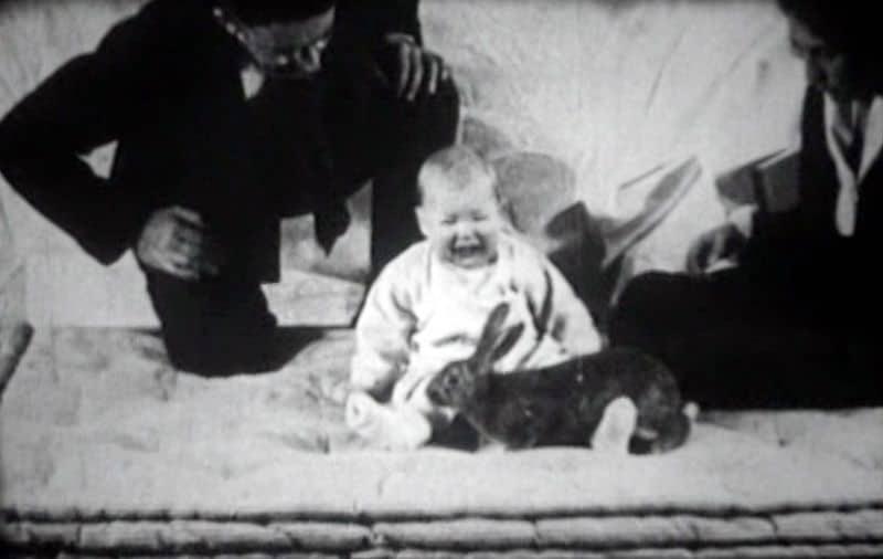 eksperymenty psychologiczne z małym Albertem