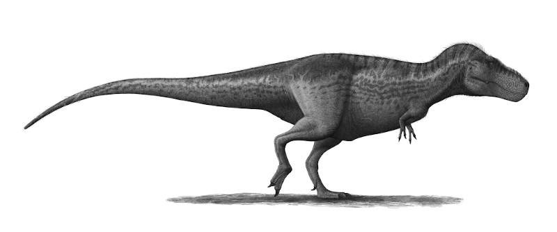 dinozaury: tyranozaur