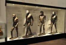 Photo of Gatunki człowieka – ewolucja i pochodzenie homo sapiens