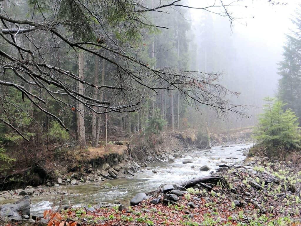 gorczański park narodowy