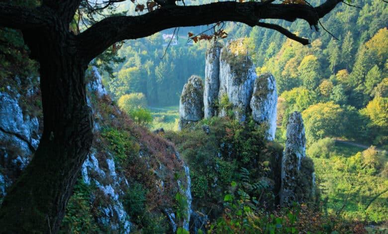 parki narodowe w Polsce - Ojcowski park narodowy