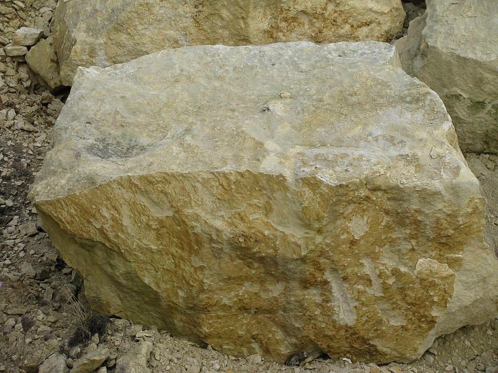 skały osadowe - wapień pińczowski